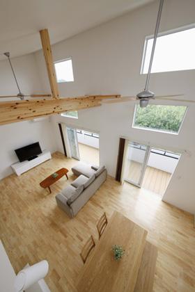 大屋根・大空間ハウス