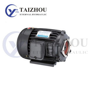 As a professional Chinese motor manufacturer and motor supplier, Taizhou Eternal Hydraulic Machi ...