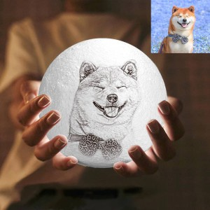 2 Color Personalized Custom 3D Printing Photo Moon Light Lamp For Pets,Dogs&Puppy – Ge ...