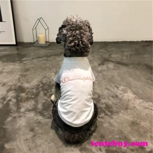 チャンピオン ドッグウェア Tシャツ Championロゴ 犬服 可愛い 春夏の新品